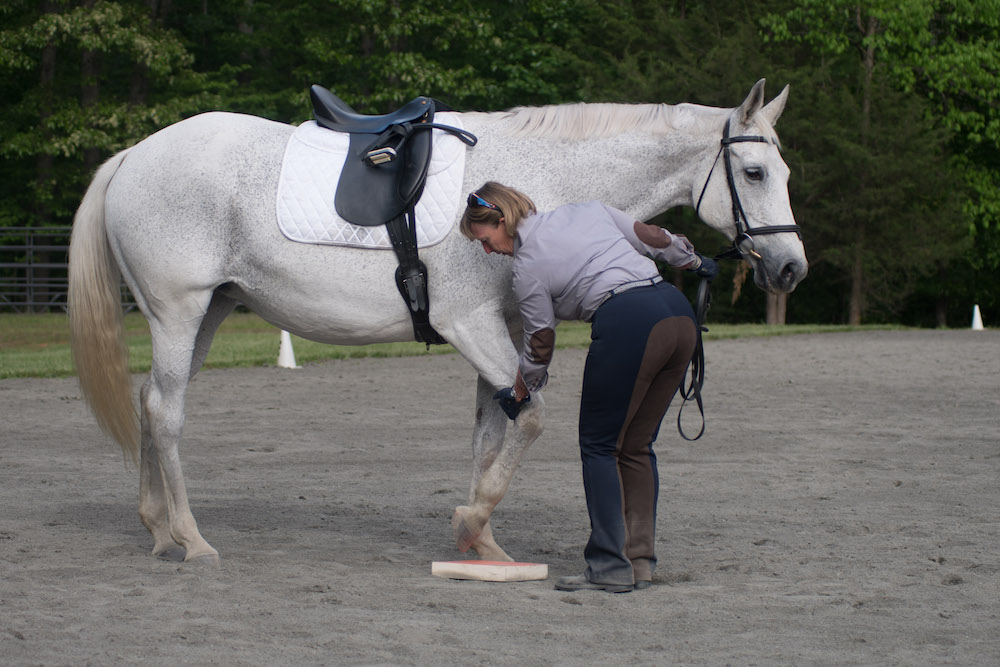Placing hoof on sure foot pad